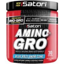 iSatori Amino-Gro, 30 Servings